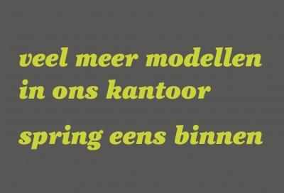 model menu